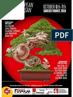 2018 10 01 Esprit Bonsai International Pdf Bonsai Nature
