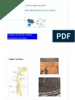 12. Sismologia.pdf