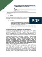 7. INFORME DIAGNOSTICO AP.docx