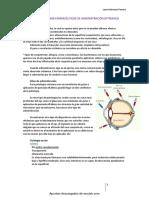 Tema 19 Laura Barroso.pdf'