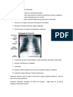 GENERALIDADES  SISTEMA VASCULAR farmaco II.docx
