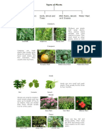 Kinds of Plants (Autosaved)