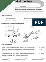 fichas-revisc3b5es-trimestral-3c2ba-ano (1).ppt