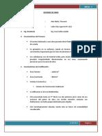 INFORME DE FERNANDO.docx