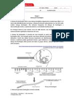 BIO12 Ficha_FINAL.docx