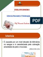 Aula 8 - HIPERBILIRRUBINEMIA.pdf