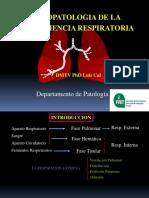 Clase Respiratorio 2011