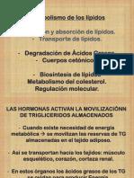 Clase Metab. de Lípidos