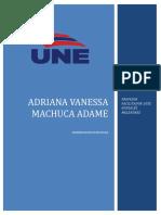 Machuca Adame S3TI3estrategia