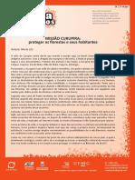 e5_24-missaocurupiraprotegerasflorestaseseushabitantes