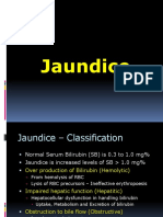 Concepts of Jaundice