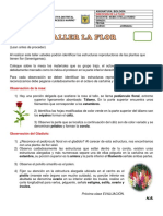 La Flor Taller