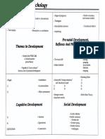 developmental graphic organizer