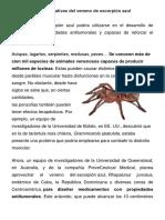 Las propiedades curativas del veneno de escorpión azul