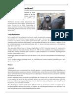 Great Ape Personhood