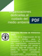Organizaciones Dedicadas Al Medio Ambiente