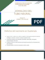 Anomalias Del Tubo Neural - Grupo C5