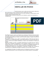 PERFILAJE.pdf