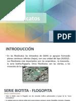 FILOSILICATO CMb.pptx