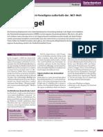 2006_03_Firebird_Embedded_Server.pdf