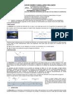 GUIA FENOMENOS ONDULATORIOS.pdf