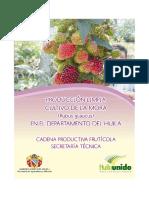 manual tecnico cultivo de la mora en el Huila.pdf
