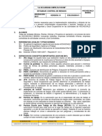 COE-DGG09-01_Estandar de Control de Riesgosestandar
