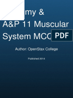 Anatomy Physiology the Muscular System Mcq Quiz