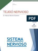 13_Tejido Nervioso.pdf