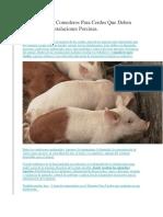 Los 2 Tipos de Comederos Para Cerdos Que Deben Estar en Tus Instalaciones Porcinas
