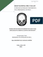 Tesis_tituloprofesional_2013.pdf