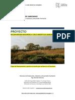 Proyecto GIRSU V1.docx