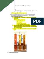 INTRODUCCION DISEÑO DE PLANTAS.docx