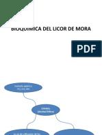 Bioquimica Del Licor de Mora