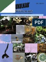 354-1215-1-PB.pdf
