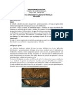 Antologia  Nestor.docx