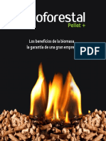 Diptico Corp Bioforestal