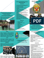 TRIPTICO PNP.docx
