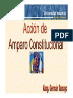 Accion_de_Amparo_Constitucional (1).pdf