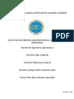 238420548-Monografia-El-Camote-v-Final (1).docx