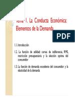 EDE1-tema1.pdf