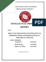 IP-Midterm-Report.docx
