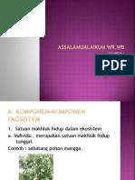 Presentation 1 Ekosistem A