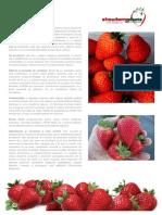 ALBION.pdf