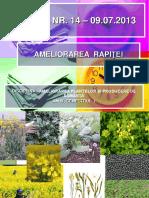 Ameliorarea-rapitei.pdf