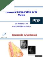Anatomia Mamaria.pdf