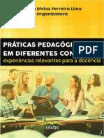 Livro PRÁTICAS PEDAGÓGICAS EM DIFERENTES CONTEXTOS_E-BOOK.pdf