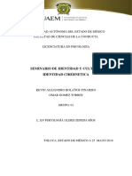 Identidad-Cibernetica.docx