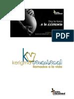 kerigmavocacional De los Dehonianos.pdf