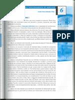 Teoria Elementar do Funcionamento do Mercado - pt1
